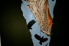 Aviary #9